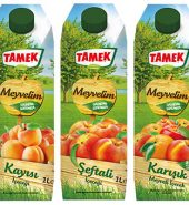 TAMEK MEYVE SUYU 1 LT